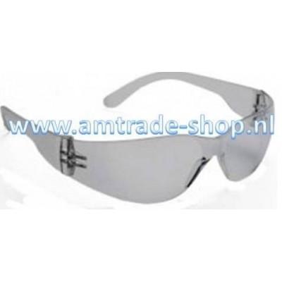 Veiligheidsbril 310